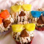Group-carob-cranberry-sunglasses