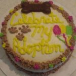 dog adoption celebration cake